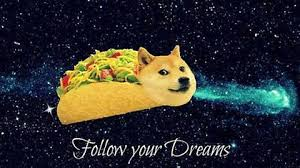 doge taco follow your dreams. Plain Your On Doge Taco Follow Your Dreams