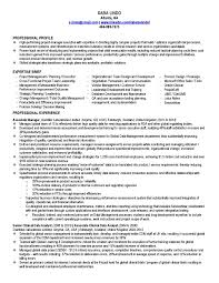 Sample Business Analyst Project Manager Resume Save It Of Cmt
