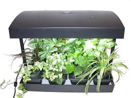 Indoor Kitchen Herb Garden Kit Indoor Herb Garden Kit Grow Light Amazing Light Fixtures Ideas