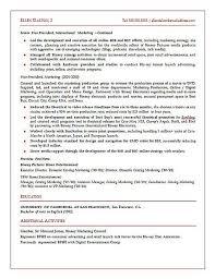 strategic marketing executive resume sample resume templates for executives