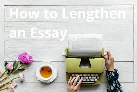 Essay Writing Fresh Essays Blog
