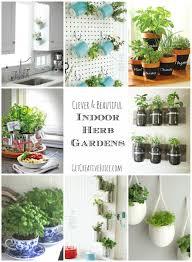 image of diy indoor herb garden ideas