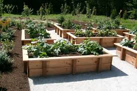 Small Picture Box Design Ideas building a vegetable garden gardening ideas