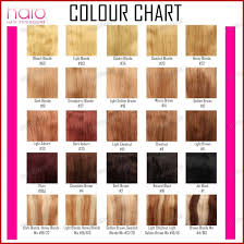 28 Albums Of Aveda Hair Color Chart 2018 Explore
