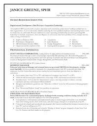 Executive Resume Template Saneme
