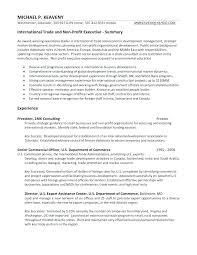 Executive Summary Resume Sample Chief Executive Summary Cv Example