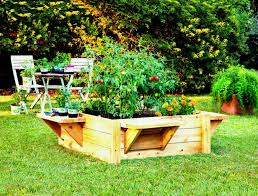 tips on building raised vegetable garden beds bed build a roof