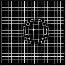 Amsler Chart Working Distance Eye Doctor Corpus Christi Amsler Grid Coastal Bend Eye