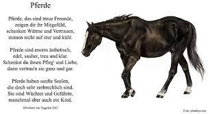 Gedichte Von Norbert Van Tiggelen Facebook