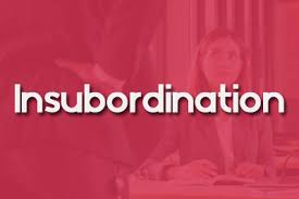 Insubordination At Work Definition Examples Thervo