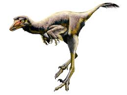 This category is for raptor theropod dinosaurs. New Raptor Dinosaur Used Giant Claw To Pin Slash Prey