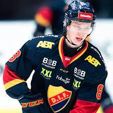 Adam Falk - Elite Prospects