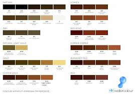 Shades Of Taupe Chart Light Shade Of Brown Color Lipolisislaser Co