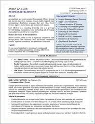 Business Development Procurement Senior Manager Resume Page 1