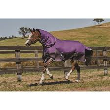 weatherbeeta comfitech plus detach a neck turnout rug