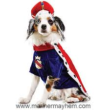 Rubies Costume Company Holiday Knit Dress For Pet Small