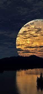 Night, moon, lake, stars, trees ...