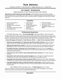 Cover Letter It Sales Executive Resume Non Profit Program Director
