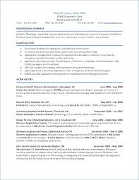 Public Administrator Sample Resume Beauteous Application Resume Sample Chic Format With Free For Gis Analyst