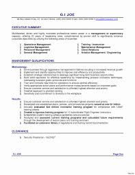 Professional Summary Template 24 Awesome Resume Professional Summary Examples Resume Writing 23