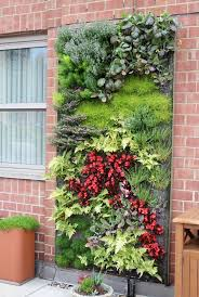 view in gallery outdoor living wall featuring a range of plants