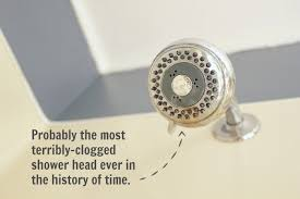 how to clean clogged shower head image cabinetandra