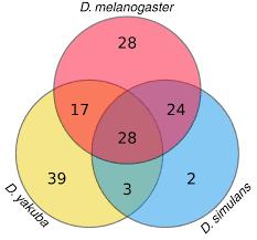 Euler Venn Diagram Euler Venn Diagram Of The Numbers Of Te Families Found In The