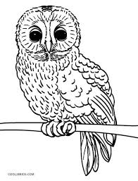 We have 28 owl coloring pages to choose from. Free Printable Owl Coloring Pages For Kids