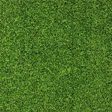 grass texture hd. Plain Texture Series Of Pictures The Green 07 Intended Grass Texture Hd R