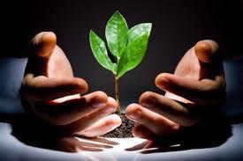Дербентский межрайонный комитет по экологии и природопользованию