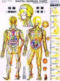 body meridian chart google search bodytalk pinterest Meridian Lines Body Map body meridian chart google search meridian lines body map
