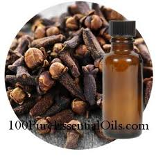 where to buy clove oil