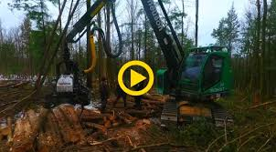 Neuson forest | Harvester Forwarder & More