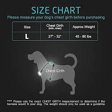 Rabbitgoo Dog Harness Size Chart Rabbitgoo Led Dog Harness Usb Rechargeable Illuminated