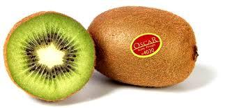 """Résultat de recherche d'images pour """"le  kiwi"""""""