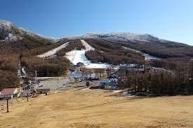 湯 の 丸 スキー 場 ライブ カメラ