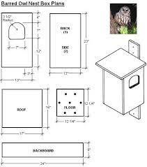 owl owl box owl nest box