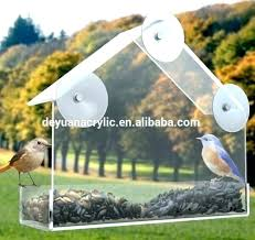 plastic bird feeders garden treasure bird feeder garden treasure bird feeder transpa plastic garden treasures bird