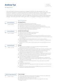Managing Director Resume Samples And Templates Visualcv