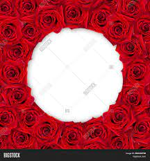 Background Red Roses Image & Photo ...