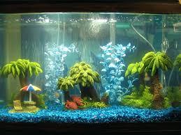 fish tank decor ideas freshwater aquarium decorations . fish tank decor  ideas wondrous unique aquarium decorations ...