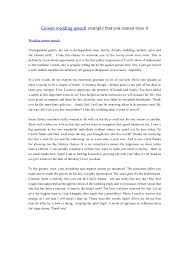 top best essay examples ideas argumentativehate sample hate speech examples template 9 documents in pdf word