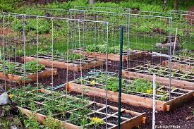 how to start a garden bed. Wonderful Garden A Raised Garden Bed Is An Easy Way To Start Gardening In Your New Home  After Youu0027ve Moved Instead Of Going Through The Process Digging Up Backyard  For How To Start Garden Bed B