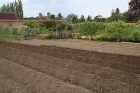 garden furrows