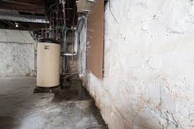restoration contractor plumber or