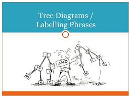how to build a tree diagrams answer key for homework and review tree diagrams  labelling phrases