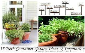 how to herb garden herb container gardens pots planters inspiration herb garden indoor diy