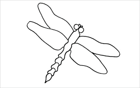 template of a dragon dragonfly pictures to print and color coloring pages page free