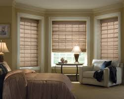 ... Endearing Shades And Blinds For Bay Window Decoration And Home Interior  Ideas : Fair Living Room ...