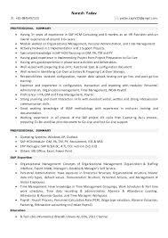 scm functional consultant resume stunning functional consultant resume  ideas oracle scm functional consultant cv